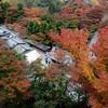 View from Kiyomizudera, Kyoto.