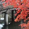 Near Chionin, Kyoto