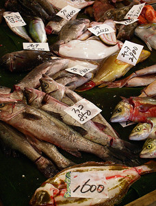 If it swims in the ocean or crawls on the seabed one minute, you'll find it in Tsukiji the next!