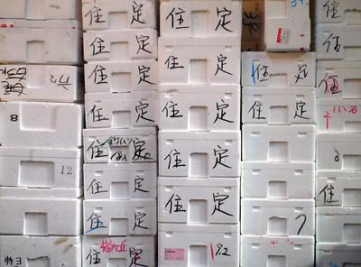 Mountain of Styrofoam packaging