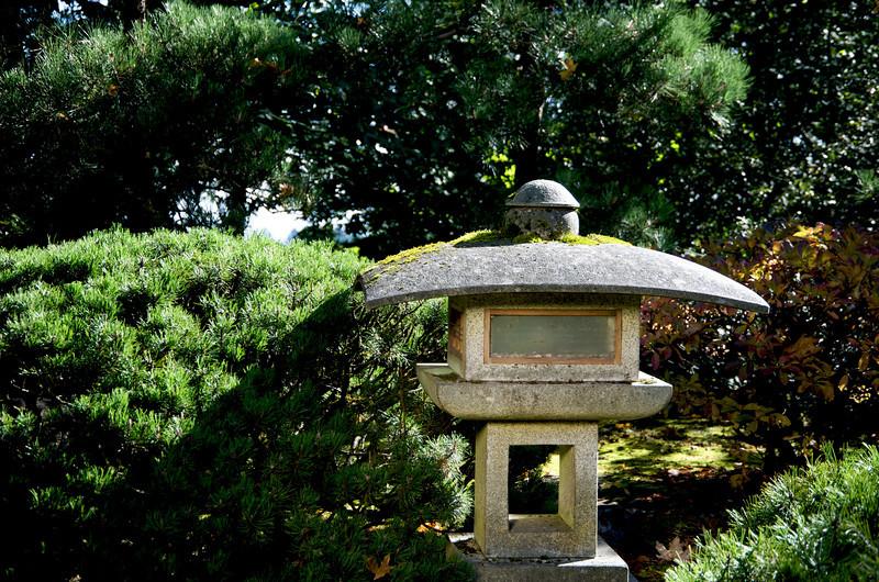 Japanese Gardens 11