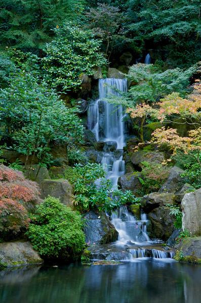 Japanese Gardens 29
