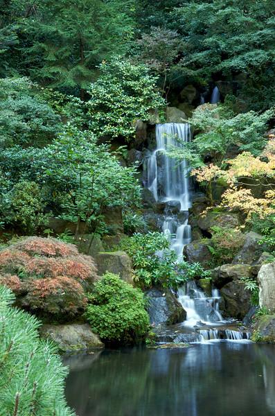 Japanese Gardens 28