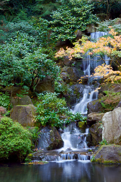 Japanese Gardens 30