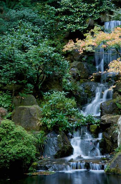 Japanese Gardens 31