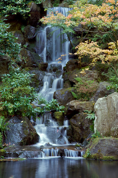 Japanese Gardens 33