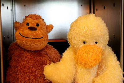 my son's stuffed animal monkey and duckie.
