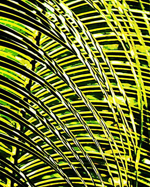 Jill Duncan_palm stripes on stripes