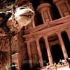 Camel at Petra 3