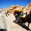 Transport at Petra