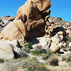 Lots of shapes of rocks in Joshua Tree National Park