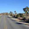 Joshua Tree National Park in California 103