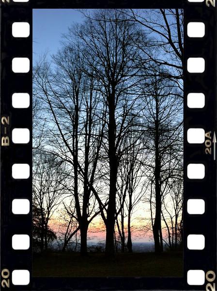 6.30am - Jogging around sunrise - Teutoburger Wald forest<br /> Bielefeld, Germany<br /> 03/2012<br /> iPhone