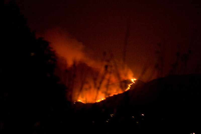 Santiago Canyon Fire
