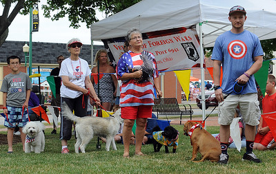 Contestants line up in the dog show at the Fourth of July celebration in Wellington on Monday, July 4. STEVE MANHEIM/CHRONICLE