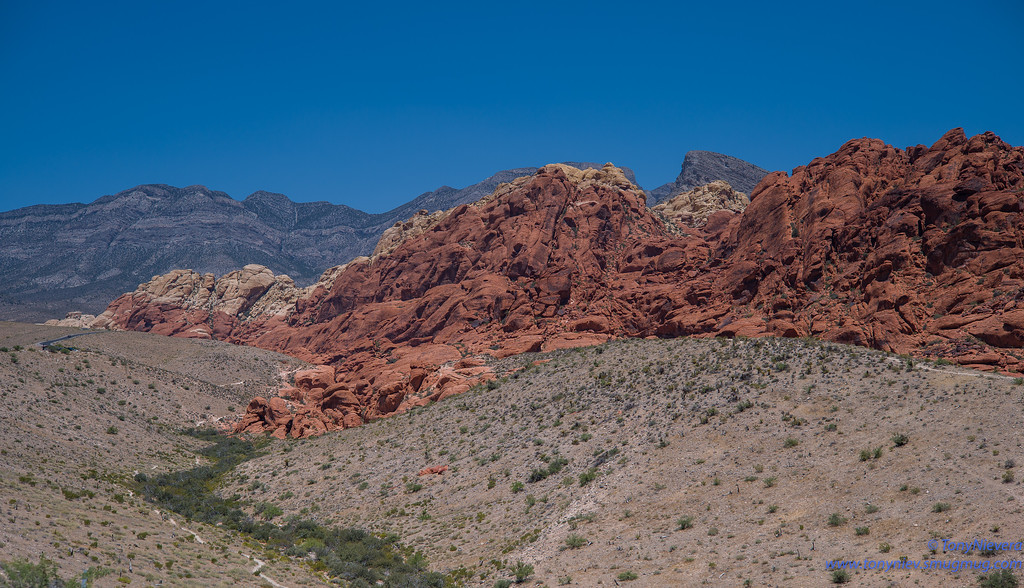 IMAGE: https://photos.smugmug.com/Photography/July-M10-Redrock-etc/i-FqwWQ5B/0/d7a69a86/XL/L1000062-XL.jpg