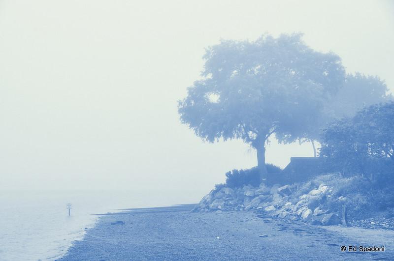 From Powderpoint Bridge, Duxbury in cyanotype