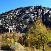 Fall Colors near June Lake near Mammoth Lakes California 2