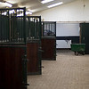 All stallion stables are empty. Some of the horses are outside, walking the stepping mill, but most of them went to Mechelen, Belgium, for a horse show.