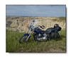 2007 Harley Davidson Softail Custom FXSTC