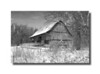 Barn Goll Woods, Archbold, OHIO, Winter, Snow,