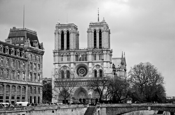 First view of Cathedrale de Notre Dame de Paris