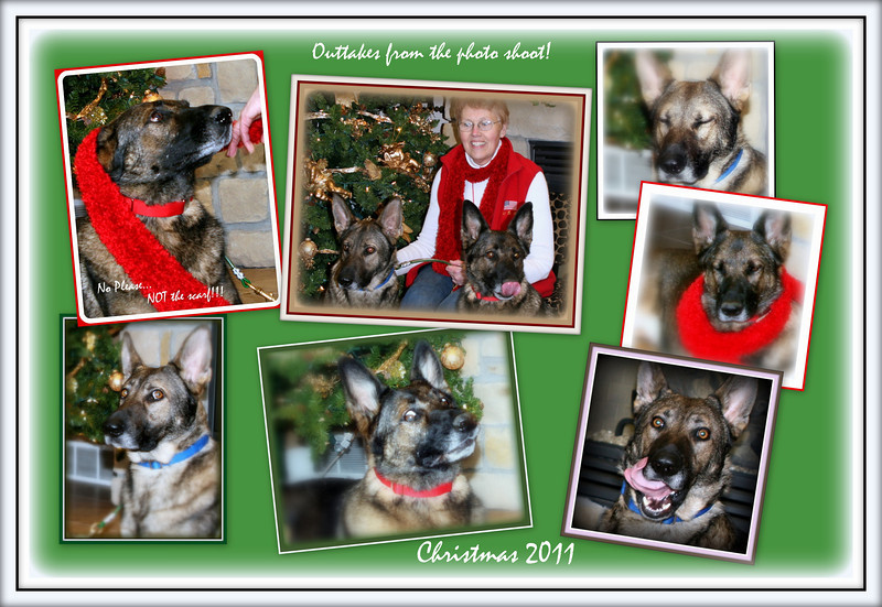 2011 - Christmas Outtakes - it took 90 pictures to get some good ones...  however...  these are the best of the bloopers!