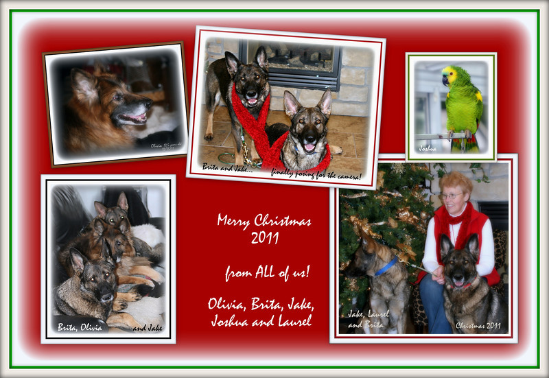 2011 - Christmas - Final Collage including Olivia and Joshua!