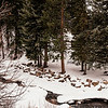 20130219ColoradoRoadTrip-0040