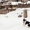 20130219ColoradoRoadTrip-0044