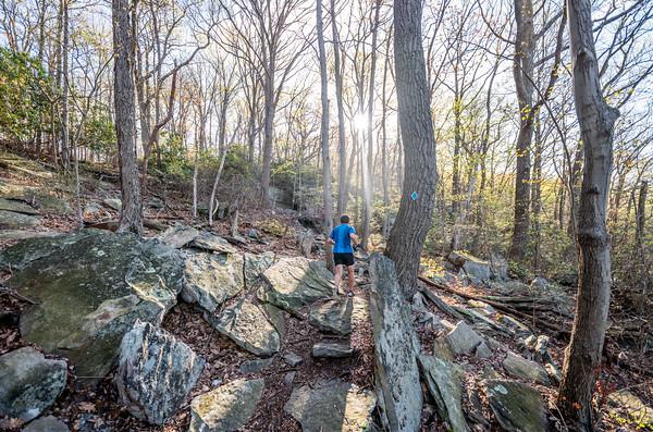 Coopers-Rock-50k-Half-Marathon-Race-WV-2019-368