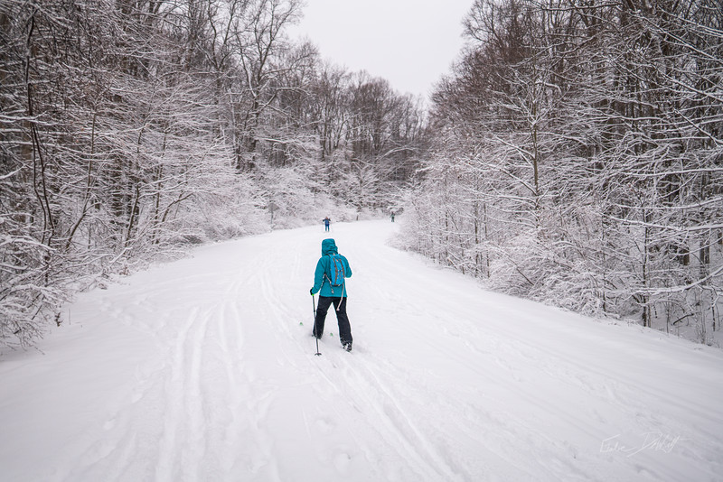 Coopers-Rock-Crosscountry-Skiing-WV-2019-16