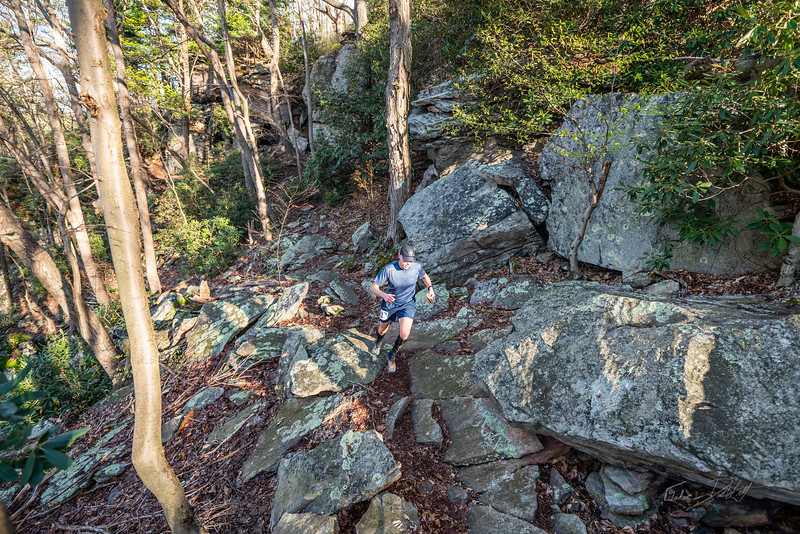 Coopers-Rock-50k-Half-Marathon-Race-WV-2019-421