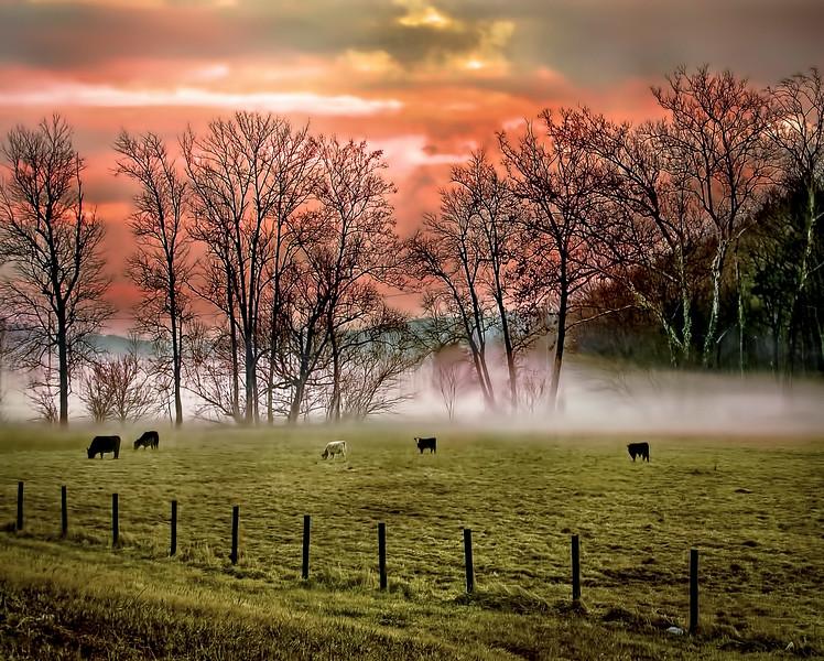 Rural Kingsport