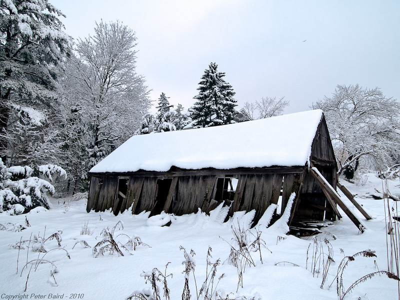 Mantel of Snow<br /> Kingston, MA<br /> January 19, 2009<br /> Olympus E1
