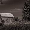 Little House No Prairie