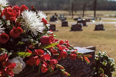 cemetery-4286
