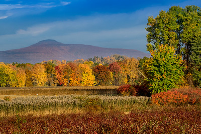 1610_Hudson Valley Autumn_567