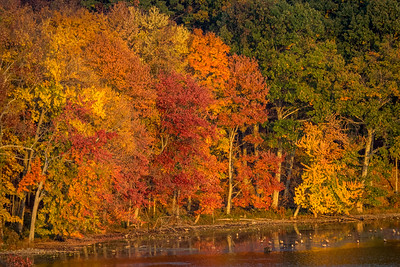 1610_Hudson Valley Autumn_337