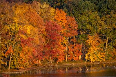 1610_Hudson Valley Autumn_337