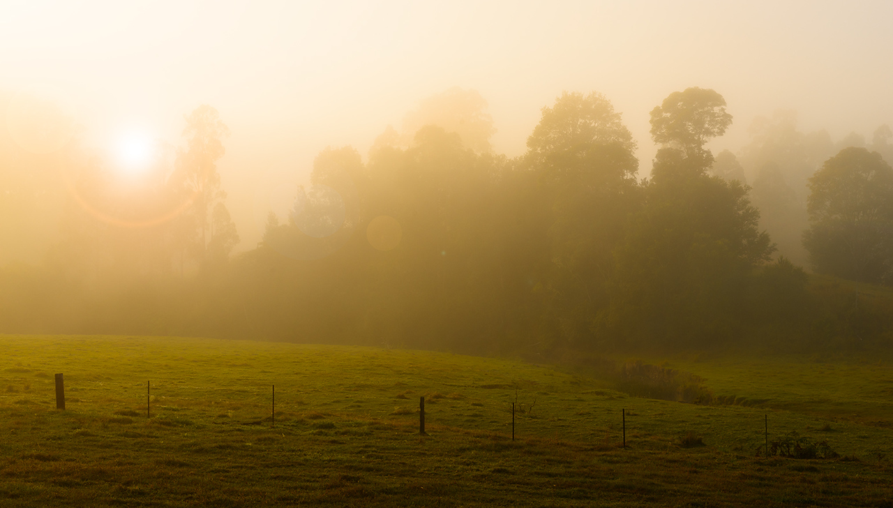 farmland at comissioner's creek in the mist
