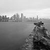Toronto Islands // 01