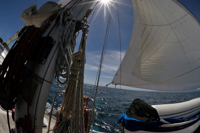 <h4>Sailing The Tasman </h4>Nelson, New Zealand