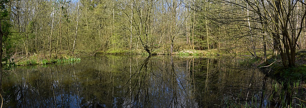 A 2 shot photomerge panorama of the hidden pond