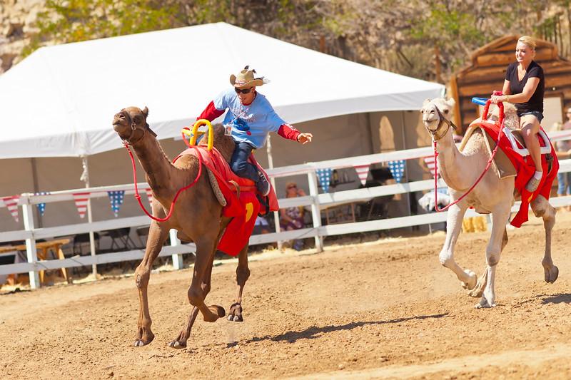 2013 Virginia City Camel Races 07
