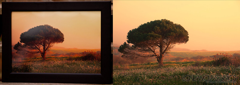 Cabrillo Highway Sunset - Limited edition print. 18x24 metallic print in a nice black wood frame.
