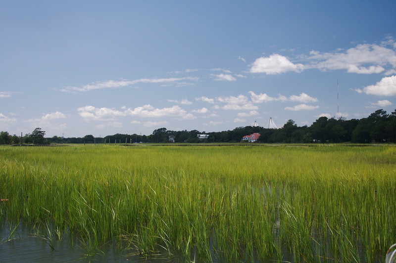 The Marshes at Shem Creek
