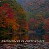 Western NC Fall colors_10-13-12_0036