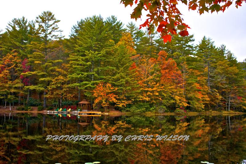 Western NC Fall colors_10-13-12_0039