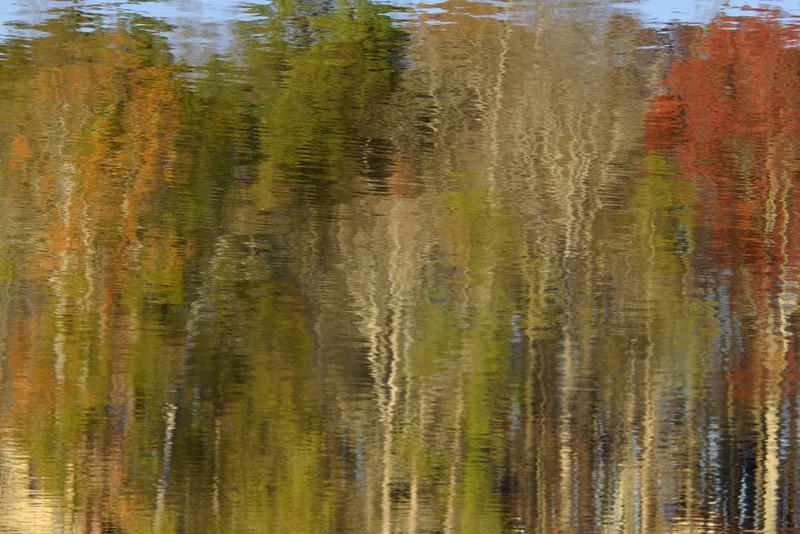 Fall Reflections II